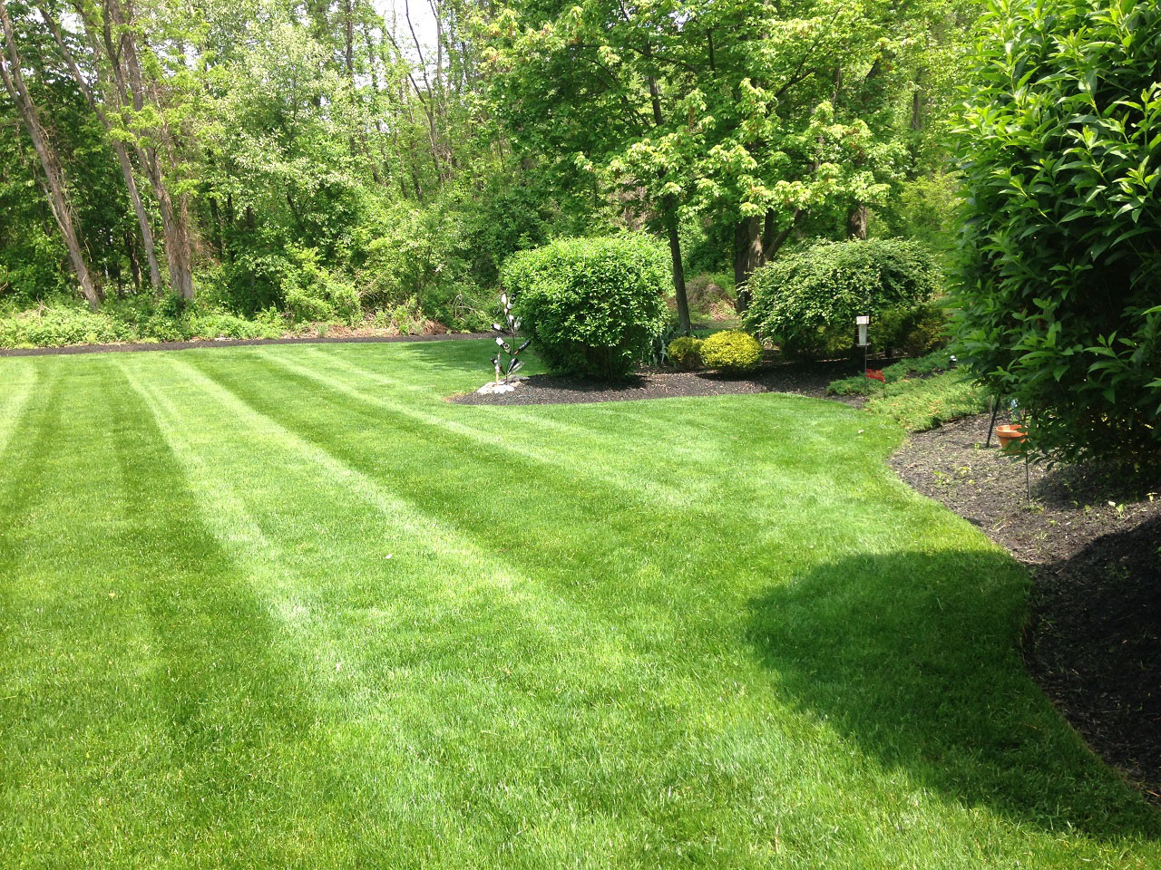 Lawn Maintenance by TGG Landscape Construction